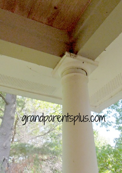 how to get rid of birds nesting on my porch