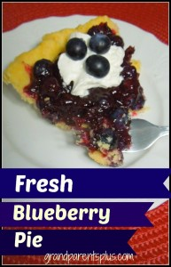 Fresh Blueberry Pie www.grandparentsplus.com