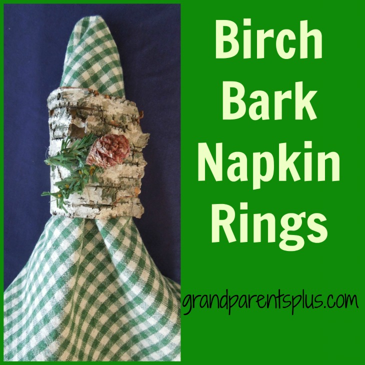 Birch Bark Napkin Rings    grandparentsplus.com
