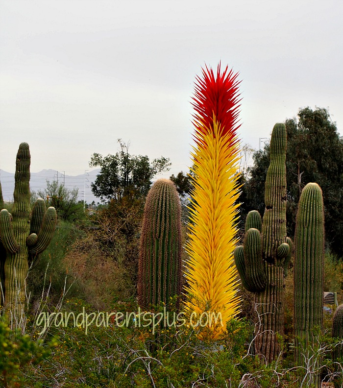 Chihuly Exhibit in Arizona  grandparentsplus.com