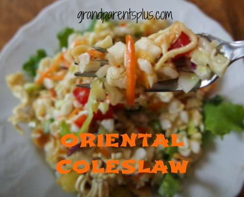 Oriental Coleslaw - the colorful version!  www.grandparentsplus.com