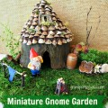 Miniature Gnome Garden grandparentsplus.com