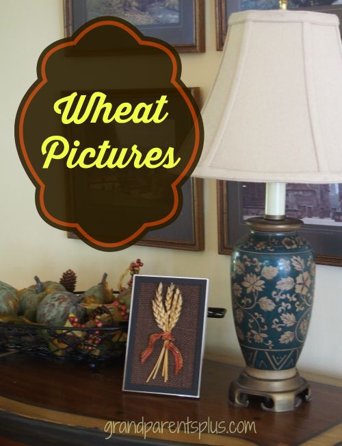 Wheat Pictures grandparentsplus.com
