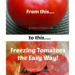 Freezing Tomatoes the Easy Way!
