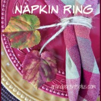 DIY Fall Napkin Rings